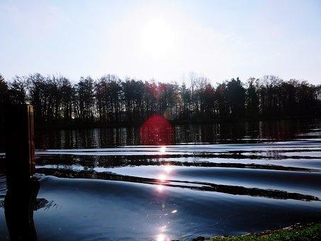 Trees, Water, Nature, Lake, Idyllic