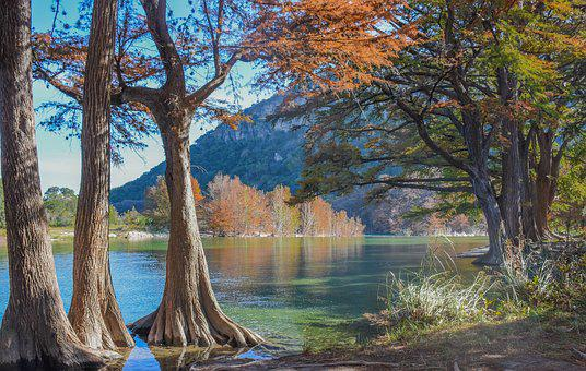 River, Trees, Nature, Water, Landscape, Outdoors