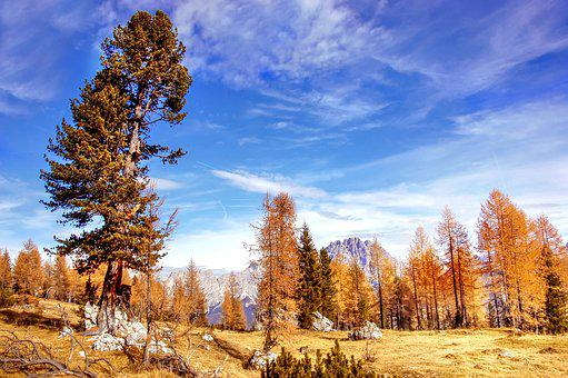 Indian Summer, Sorapis, Dolomites, Alm, Nature, Blue