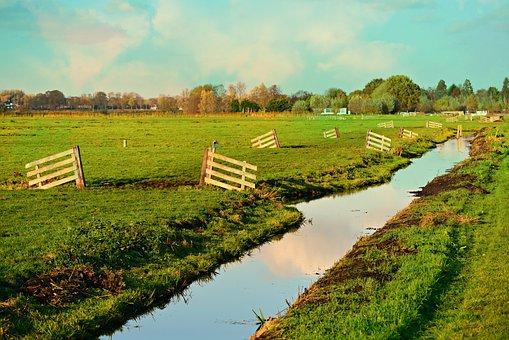 Meadow, Grass, Waterway, Ditch, Polder, Dutch Landscape