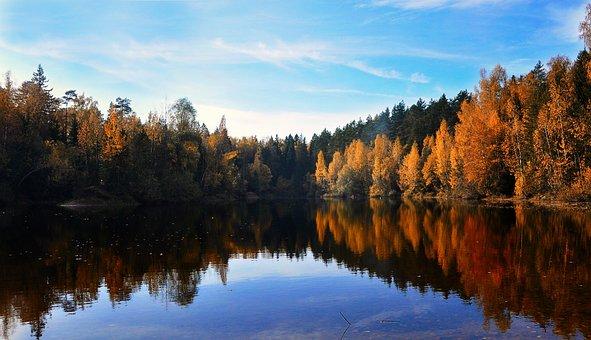 Autumn, Pond, Nature, Landscape, Reflection, Trees
