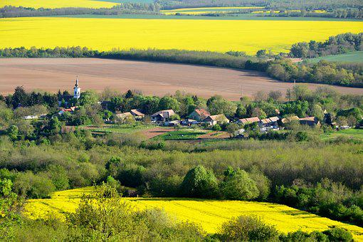 Csarnóta, Baranya, Yellow, Green, Church, Village