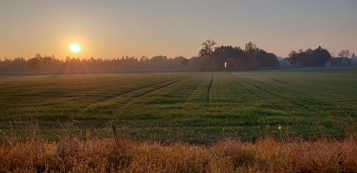 Landscape, East, Field, In The Morning, Peace Of Mind