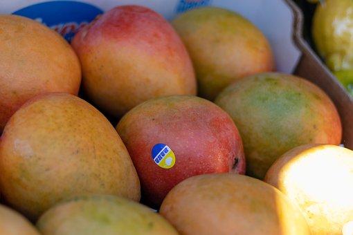 Mango, Fruit, Food, Tray, Healthy, Fresh