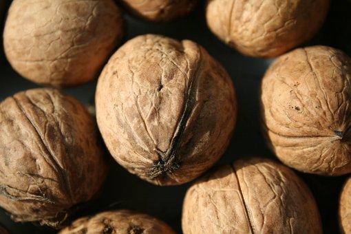 Walnut, Nut, Harvest, Nuts, Walnuts, Shell, Food