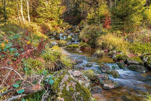 River, Stones, Water, Nature, Landscape, Stone, Scenic