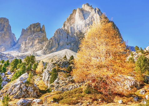 Indian Summer, Dolomites, Autumn, Alm, Nature