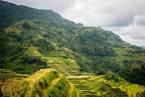 Philippines, Rice Terraces, Banaue