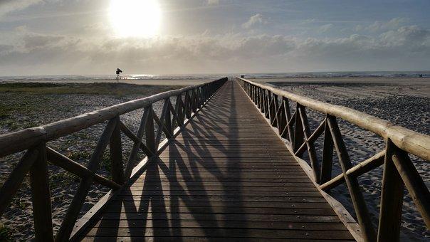 Beach, Sol, Ocean, Summer, Nature, Relaxation, Tropical