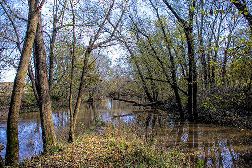 River, Water, Trees, Nature, Landscape, Outdoor