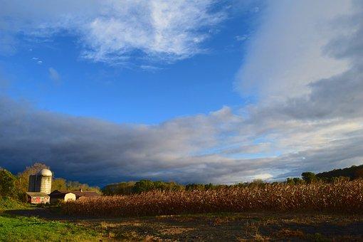 Silo, Farm, Barn, Sunlight, Autumn, Clouds, Sky