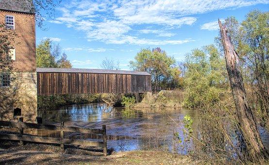 Bridge, Wood, Wooden Scenic, Nature, Railing, Landscape