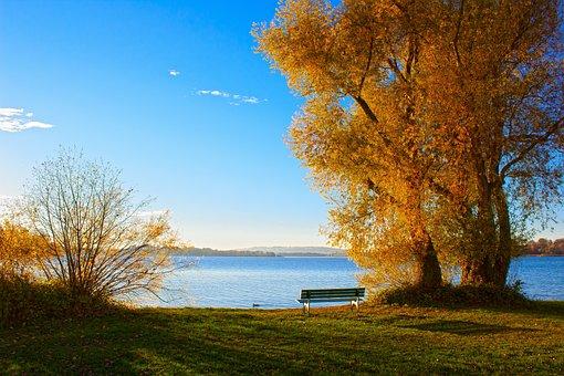 Lake, Chiemsee, Autumn, Nature, Landscape, Tree, Bank