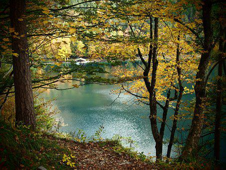 Lake, Fall, Forest, Yellow, Blue, Green, Trees, Nature