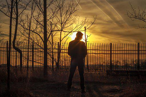 Sunset, Man, Boy, Forest, Silhouette, Male