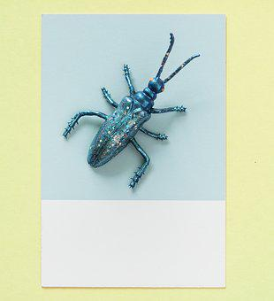 Abstract, Animal, Background, Blue, Bug, Card, Colorful