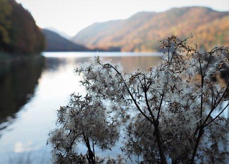 Lake, Mountain, Sweetness, Soft, Fragile, Calm, Fluffy