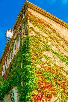 House, Overgrown, Climber Plant, Lantern, Lighting