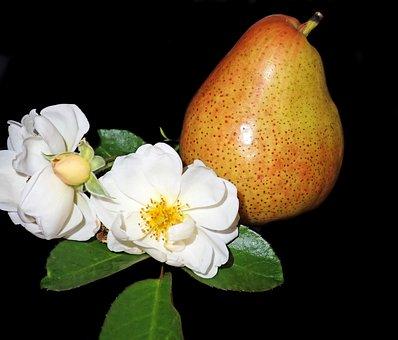 Pear, Fruit, Rose, Flower, Nature