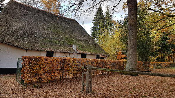Farm, Belgium, Old, Fall, Antwerp, Peersbos, House