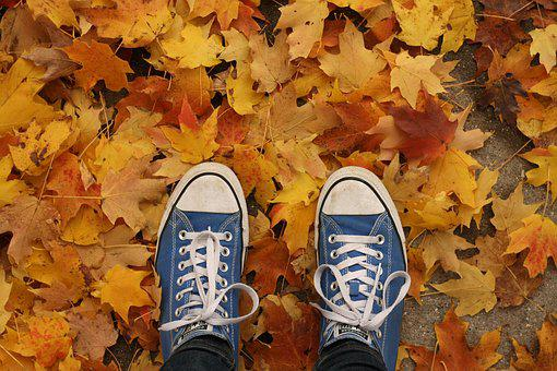 Fall, Autumn, Shoes, Leaves, Nature, Background, Orange