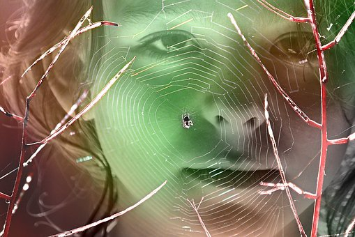 Girl, Face, Spider Web, Spider, Twig, Eye, Nose, Mouth