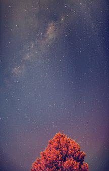 Milky Way, Star, Space, Astronomy, Dark, Galaxies