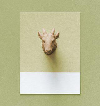 Abstract, Animal, Art, Background, Beige, Card