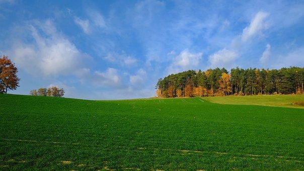 Nature, Landscape, Autumn, Autumn Colours