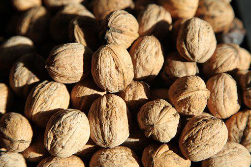 Nuts, Fall, Delicious, Fruit, Vitamins, Health, Nature