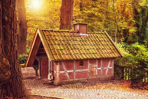 Forest, Trees, House, Backhaus, Historically, Old