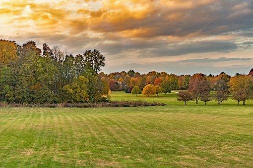 Landscape, Grass, Park, Autumn, Tree, Sky, Outdoors