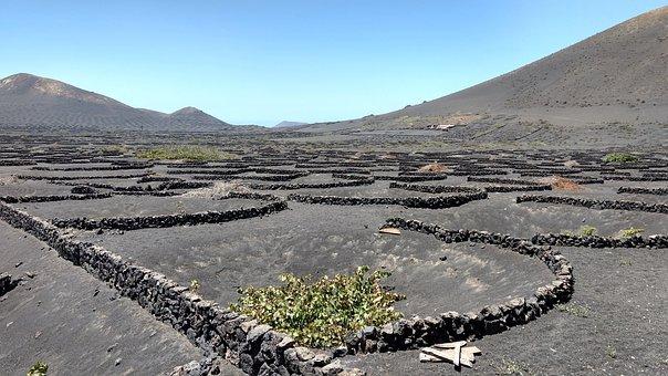 Lanzarote, Wine, Landscape, Volcanic Earth, Winery