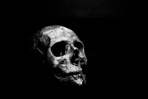 Skull, Human, Skeleton, Bone, Head, Death, Dead, Creepy