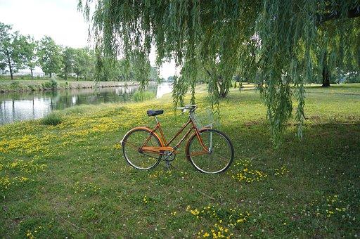 Vintage, Bicycle, Bike, Summer, Retro, Old, Romantic