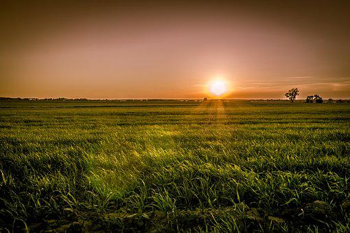 Sunset Over The Fields, Meadows, Evening