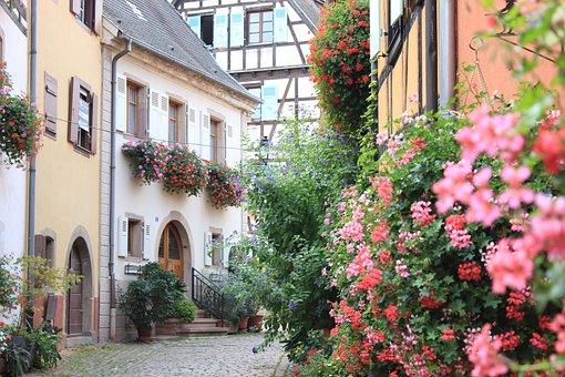 France, Alsace, Eguisheim, Village, Old, Flowers
