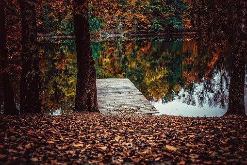 Reflections, Autumn, The Addition Of, Colors, Dark