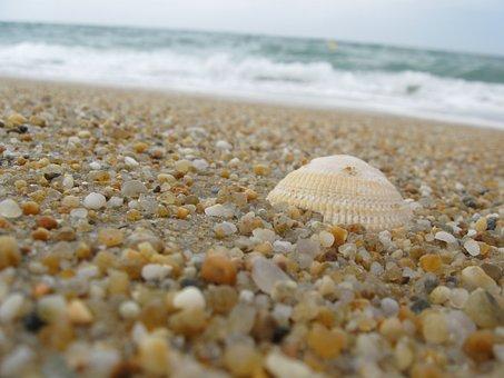 Germany, Baltic Sea, Sea, Coast, Nature, Water, Beach