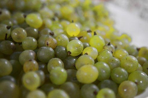 Grapes, Ceongpodo, Fruit, Chartreuse, Korea, If Acid
