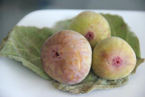 Figs On Leaf, Fruit, Nutrition, Health, Organic, Diet