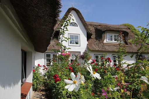 Amrum, Thatched Cottage, Thatched Roof, Garden, Flowers