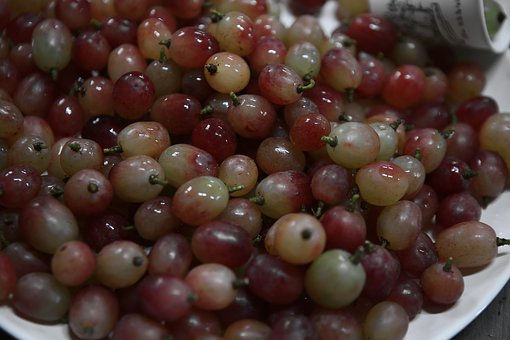 Grapes, Nature, Fruit, The Vine, Food, Wines, Green
