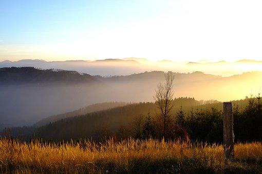 Nature, Landscape, Autumn, Autumn-appearance