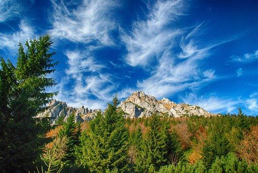 Autumn, Nature, Forest, Trees, Mood, Foliage, Mountains