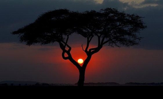 Kenya, Sunset, Africa, Nature, Sun, Outdoors