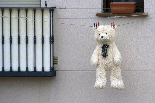 Teddy, Bear, Toy, Bears, Funny