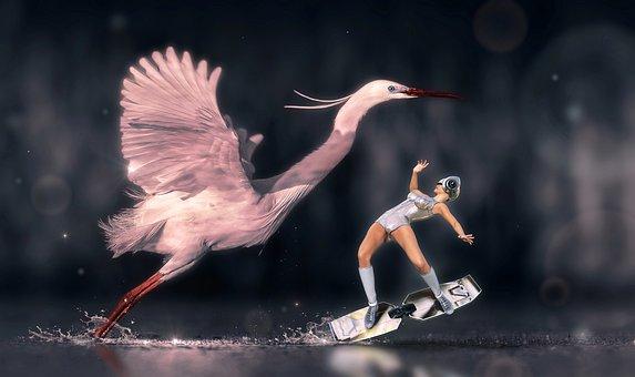 Fantasy, Heron, Bird, Woman, Surf, Water, Flying
