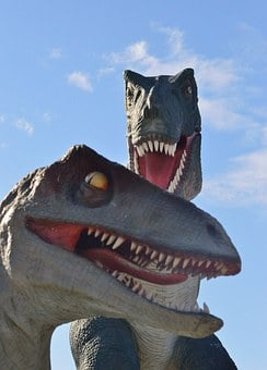 T-rex, Tyrannosaurus Rex, Dino, Dinosaur, Reptile