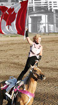 Horse, Rider, Rodeo, Exhibition, Horseback, Sport
